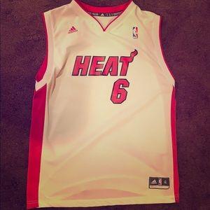 LeBron James Miami Heat Jersey (Screen Printed)